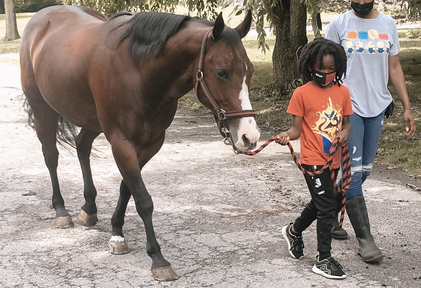 child leading a horse
